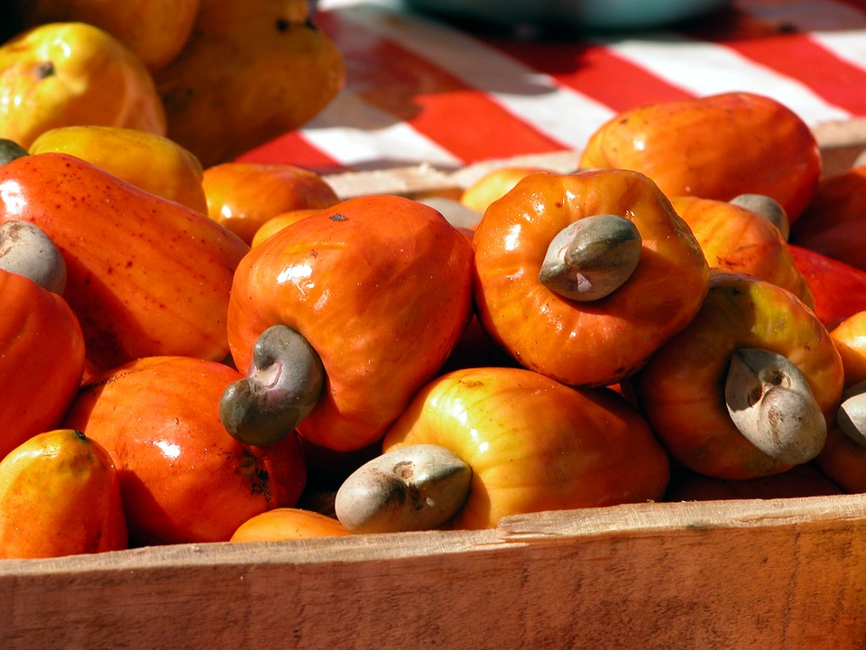 ovoce kešu